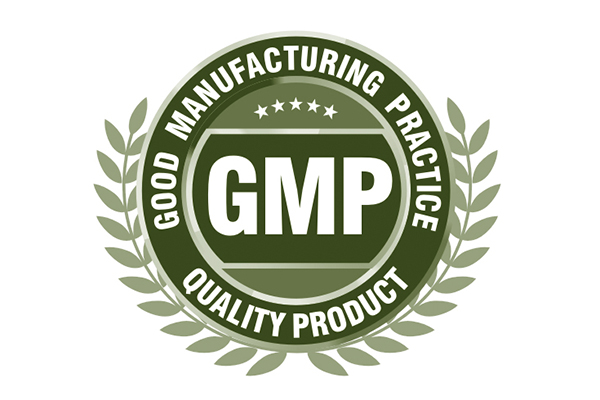 GMP and Product Development Phases